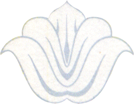 SeeThrough-Flower-Obverse-1000