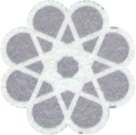 SeeThrough-Flower-reverse-500